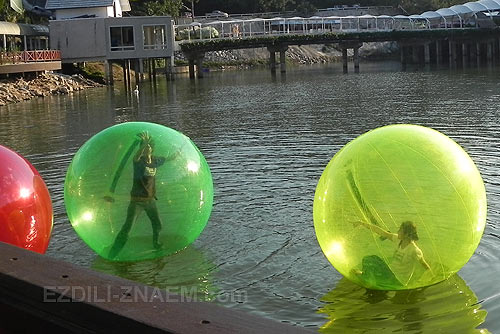 зоопарк. Катание по озеру внутри шаров