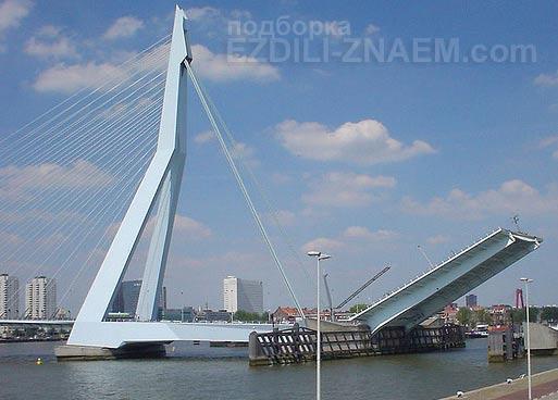 Самые необычные мосты мира: мост Эразмус в Роттердаме