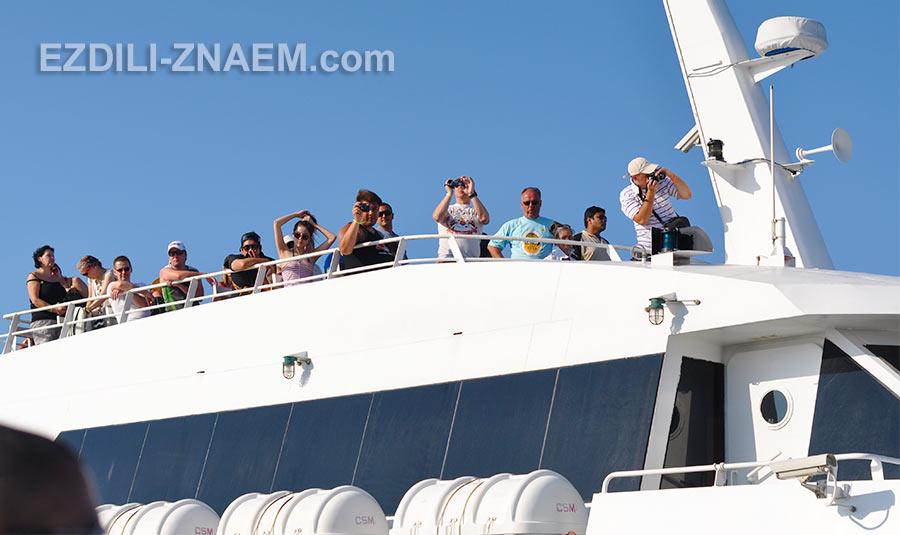 Катамаран прибыл на остров Панган