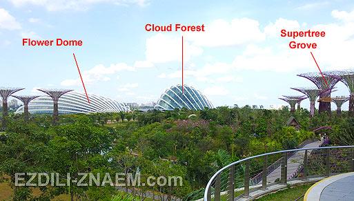 """Достопримечательности в парке """"Garden by the Bay"""" в Сингапуре"""