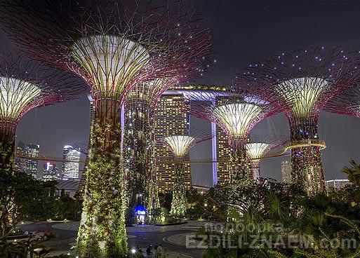 """Достопримечательность Сингапура - парк """"Garden by the Bay"""""""