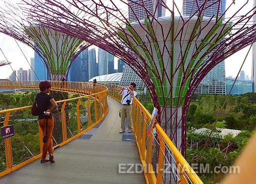 """Достопримечательность Сингапура: мост SkyWay в """"Парке у Залива"""""""