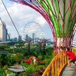 """Парк """"Garden by the Bay"""" – новая достопримечательность Сингапура"""