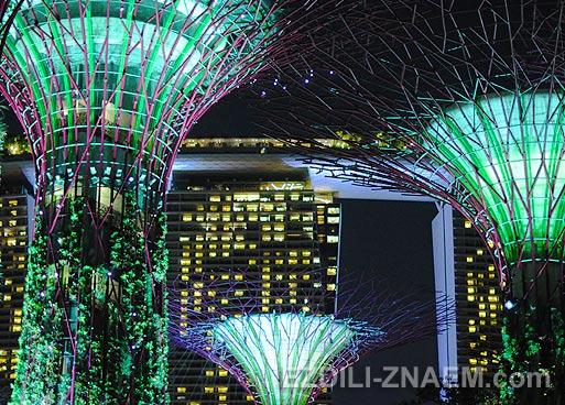 """Парк """"Garden by the Bay"""" - новая достопримечательность Сингапура"""