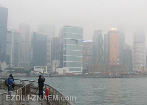 Такое можно увидеть только в Гонконга