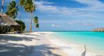 Как поехать на Мальдивы недорого: 7 лучших отелей для отдыха на Мальдивах вдвоем