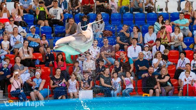 Дельфинарий Сочи Парка