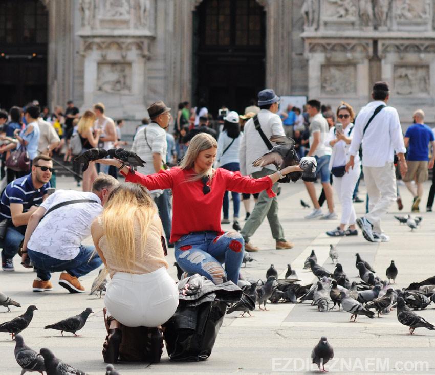 Голуби у собора Дуомо, Милан, Италия