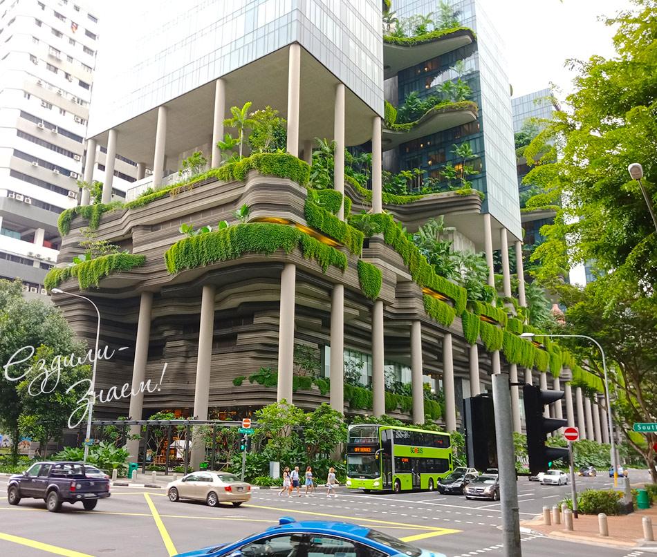 Дома в Сингапуре - современные с внутренними садами