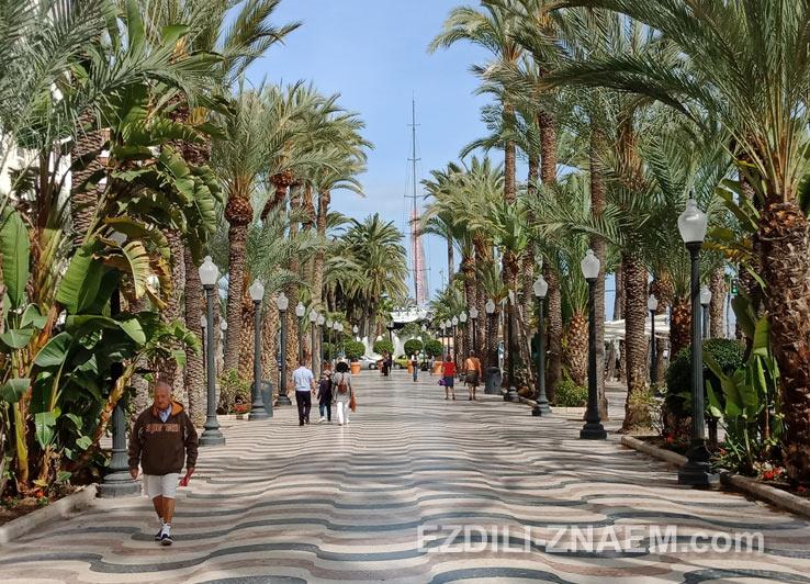 Бульвар Эспланада в Аликанте
