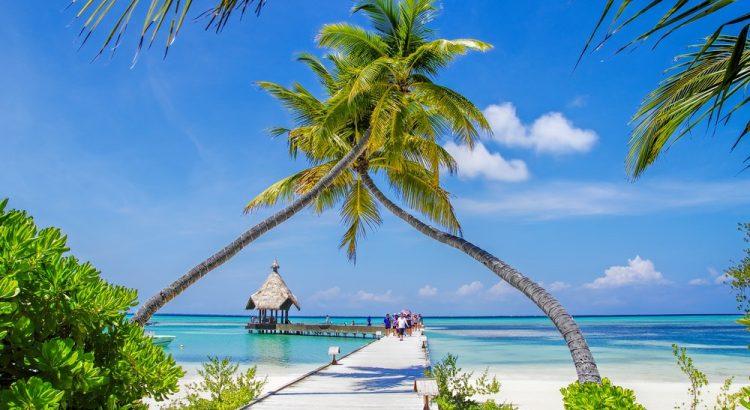 Как недорого поехать на Мальдивы