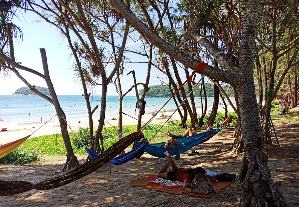 Гамаки в мангровых деревьях на пляже Ката