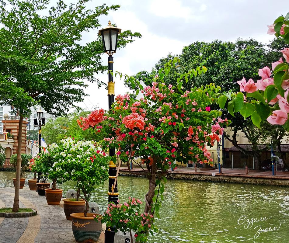 Малакка - очень зеленый и цветущий город