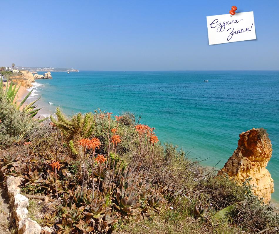 Отдых на океане в Португалии. Виды Портимао