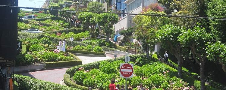 Самая кривая в мире улица в Сан-Франциско