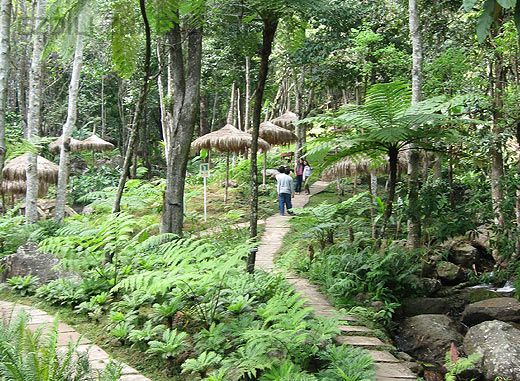 ботанический сад Сирипум