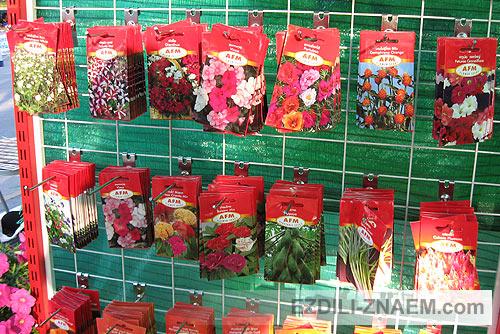 семена цветов на Празднике цветов Тайланда