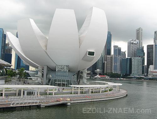 фото Сингапура. Арт музей в Марина Бэй