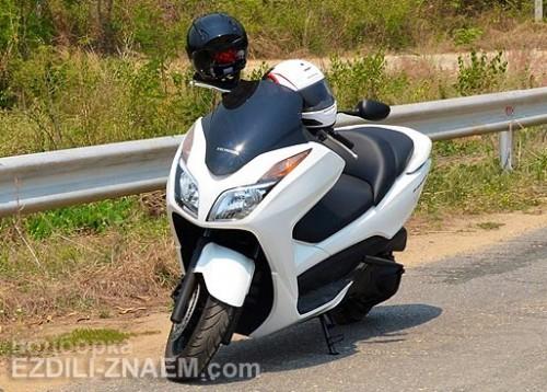Аренда мотобайка Хонда Форза в Тайланде