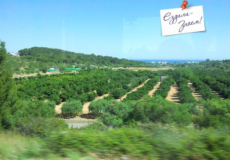 Ландшафты Испании из окна автобуса