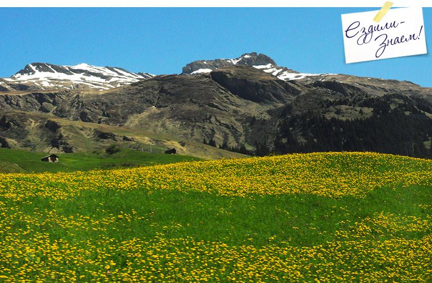 Швейцария на автобусе. Альпийские луга