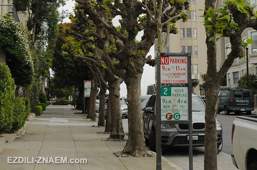 Где можно парковаться в США