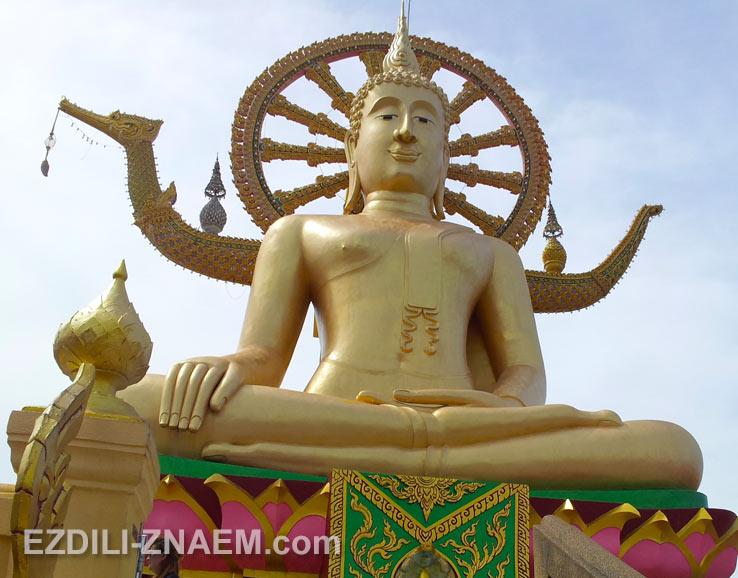На фото: посмотрели золотую статую Большого Будды