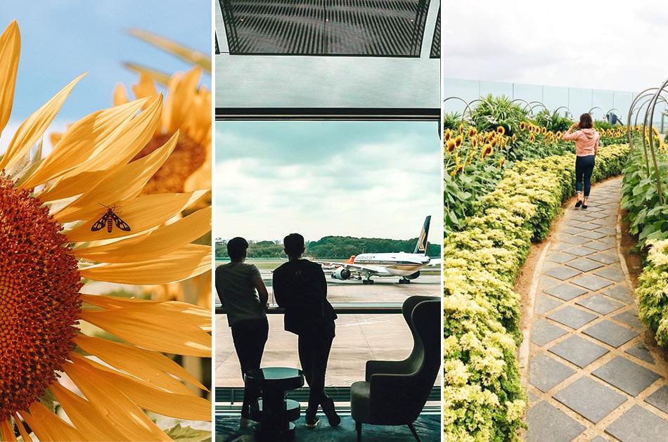 Чанги - аэропорт в Сингапуре