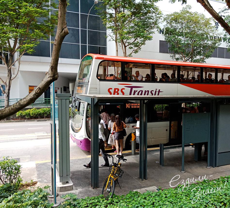 Общественный транспорт Сингапура. На фото двухэтажный автобус