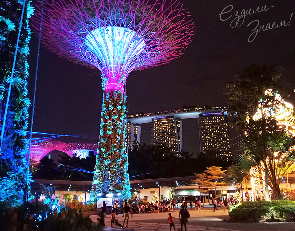 В парке Gardens by the Bay