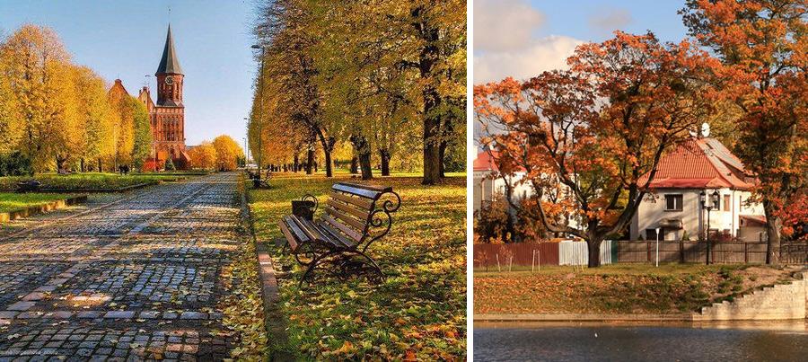Калининград осенью