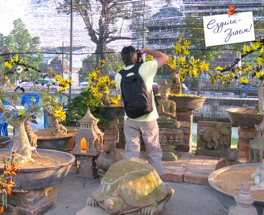 фотограф на празднике цветов. Таиланд