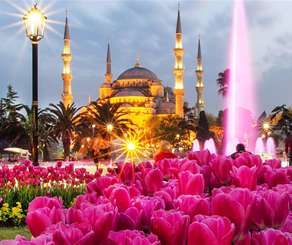 Тюльпаны и фонтан вечером на площади Султанахмет в Стамбуле