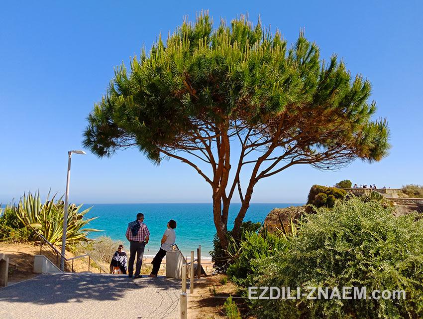 Отдых на океане в Портимао в мае. Португалия