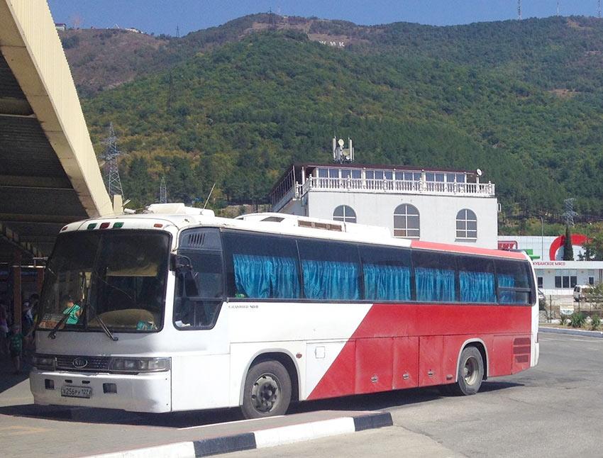 Автобус на автовокзале в Геленджике
