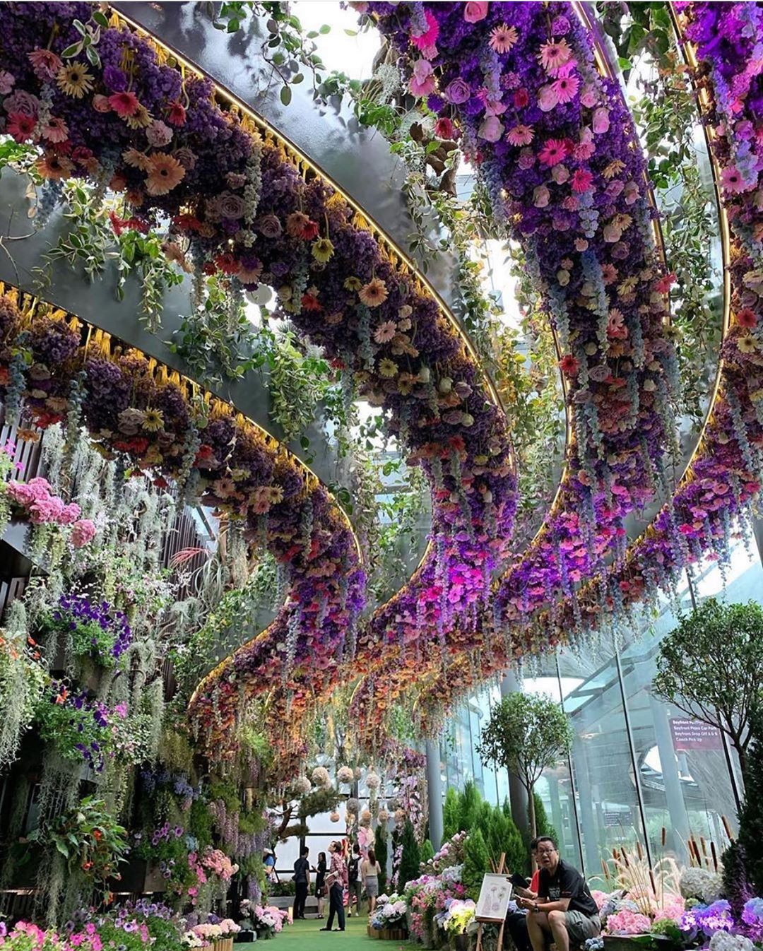 Flower Dome - оранжерея редких цветов