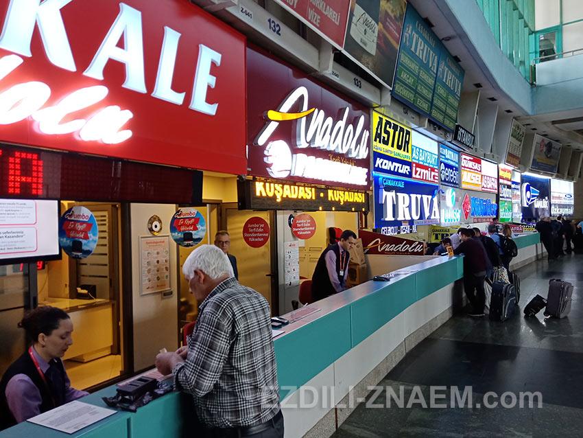 """Покупка билетов на автобус до Кушадасы в кассе компании """"Pamukkale"""", Измир"""