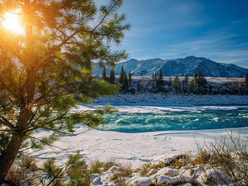 Горный Алтай, Чемал зимой