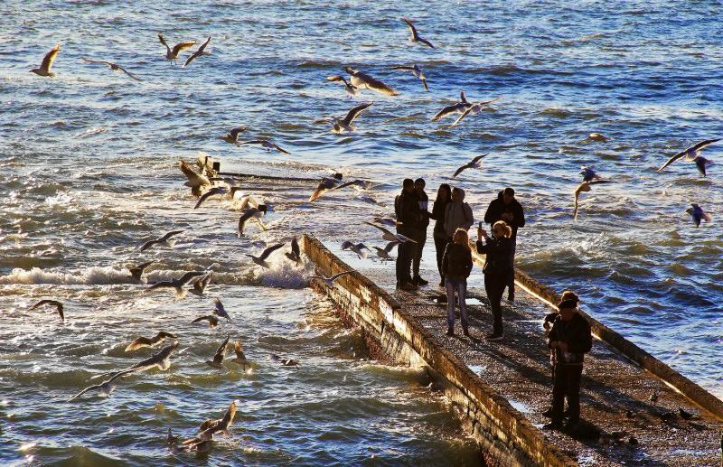 Море в Сочи зимой. Январь