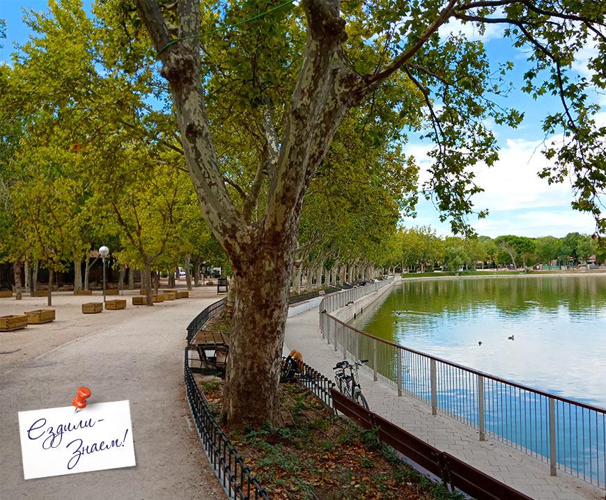 Аллея вокруг озера в парке Каса де Кампо