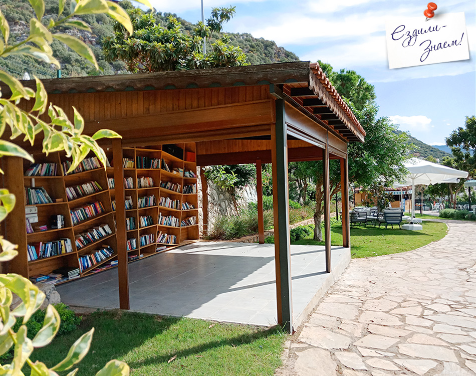 Парк с книгами