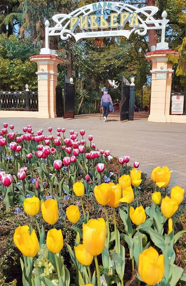 Парк «Ривьера» в Сочи