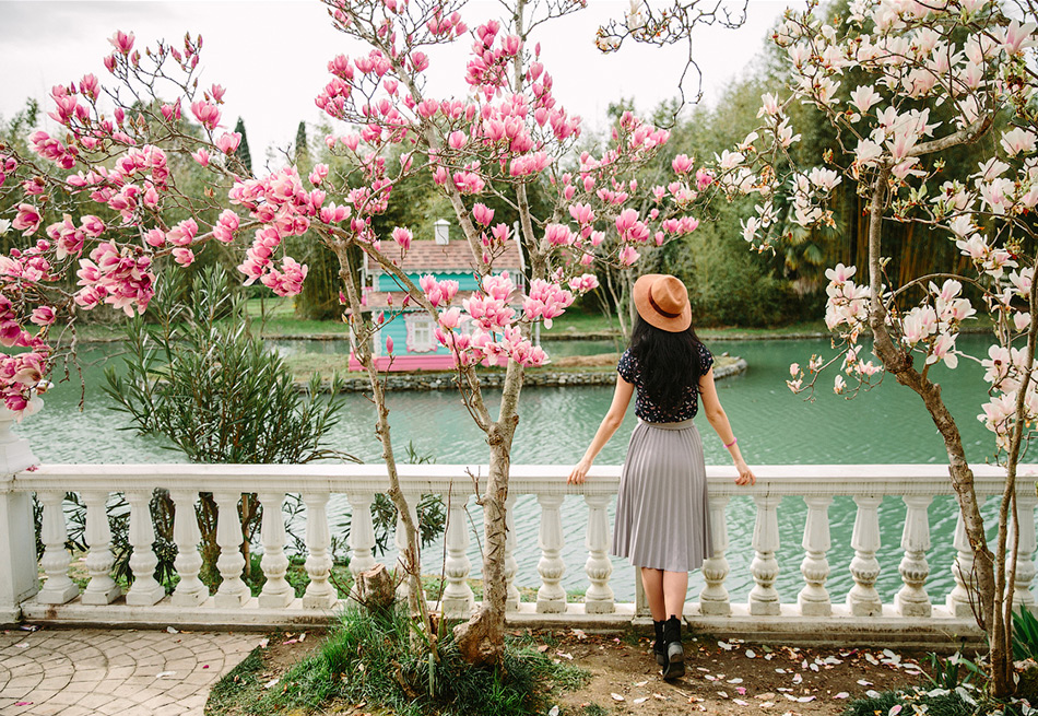 Цветут магнолии. Фото Андрей Василисков