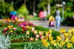Что делать в Сочи на майские праздники: где отдохнуть и куда сходить