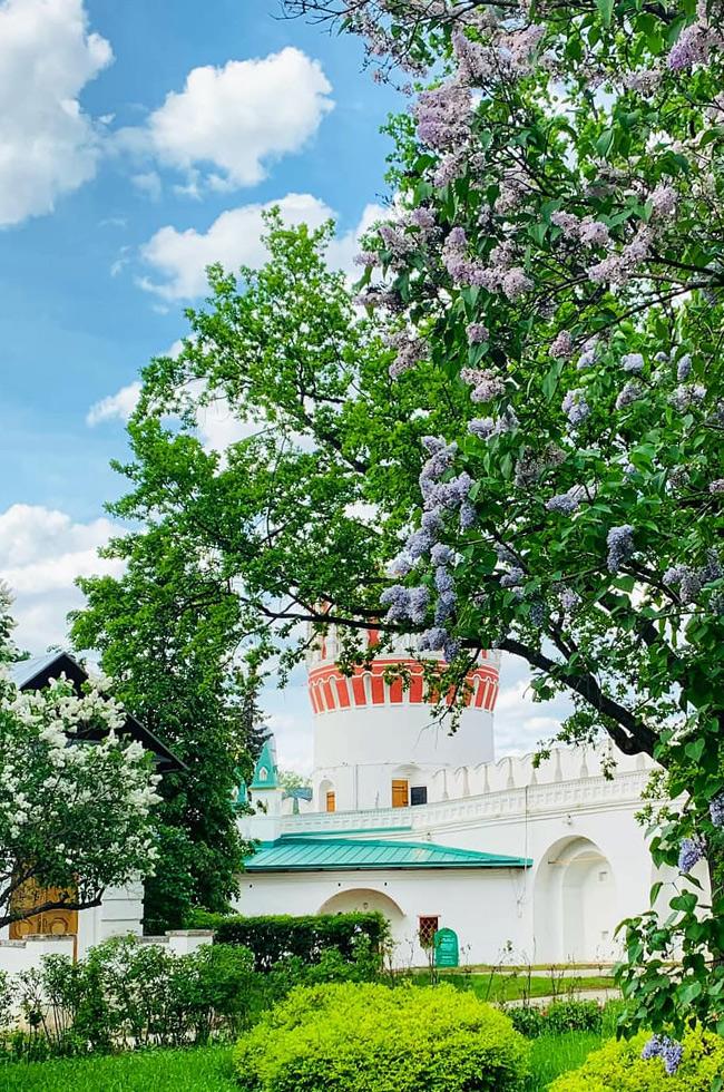Парк Новодевичего монастыря