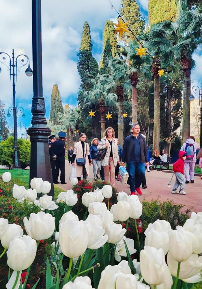Навагинская улица в Сочи. Фото: М.Куприй
