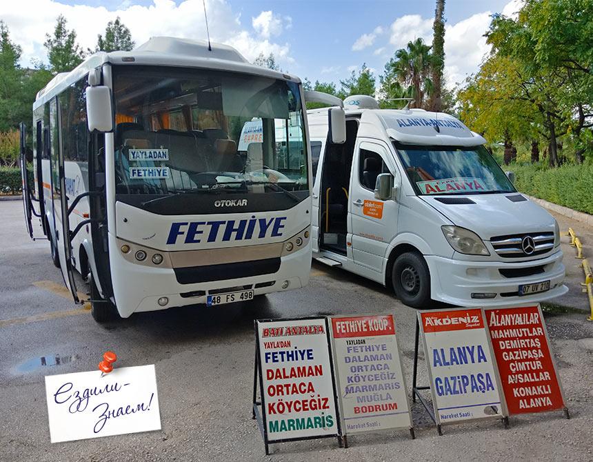 Автобус и маршрутка на автовокзале Анталии